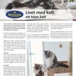 Att köpa katt - sid 1