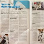 Vart är djursjukvården på väg?