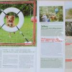 Härliga hund Nr 9 2011 sid 2